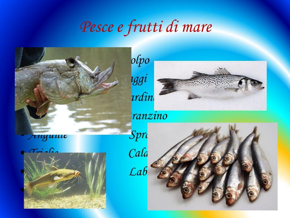 Pesce e frutti di mare Acciughe Polpo pesce cinghiale Raggi