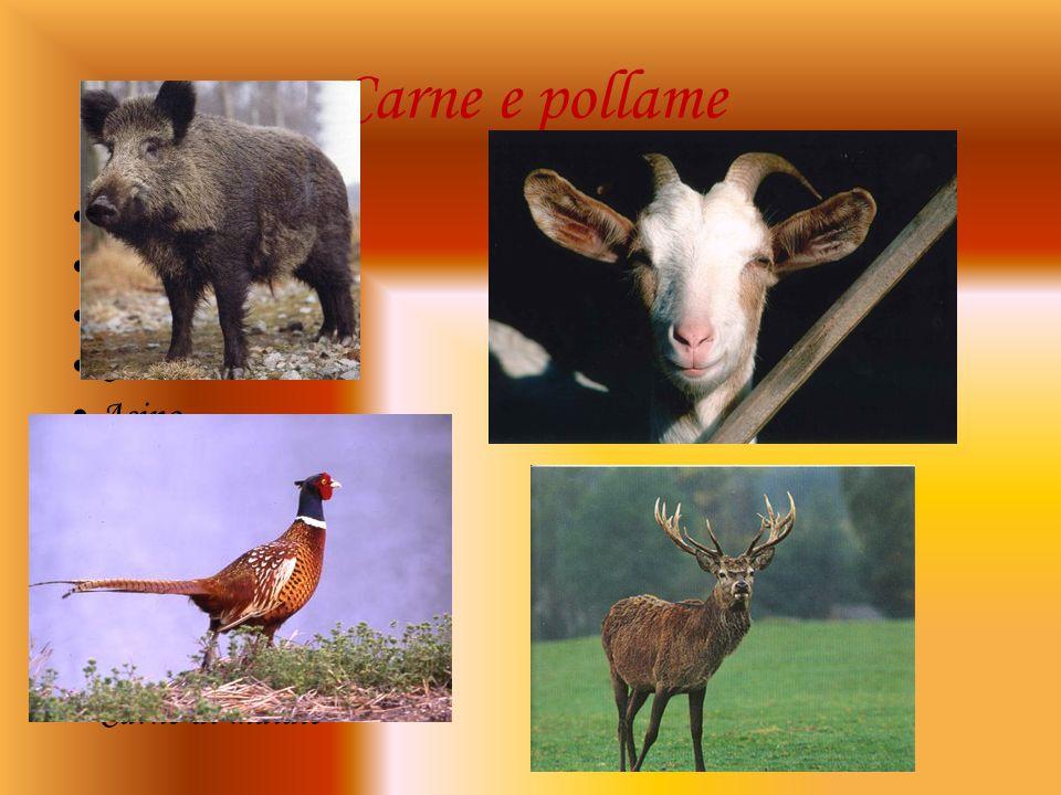 Carne e pollame Uccelli Cinghiale Pollo Cervo Asino Capra Oca Lepre