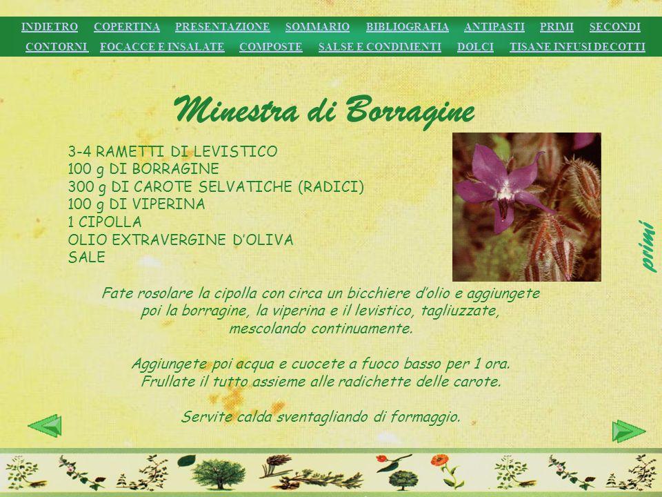 Minestra di Borragine primi 3-4 RAMETTI DI LEVISTICO