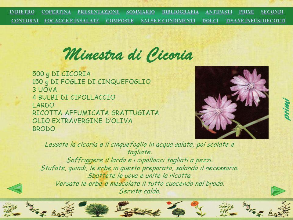 Minestra di Cicoria primi 500 g DI CICORIA
