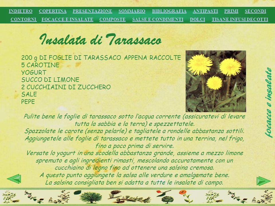 Insalata di Tarassaco focacce e insalate