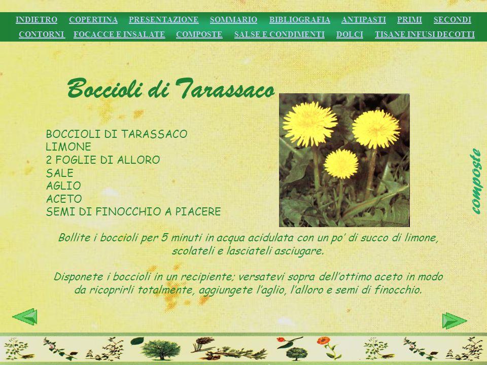 Boccioli di Tarassaco composte BOCCIOLI DI TARASSACO LIMONE