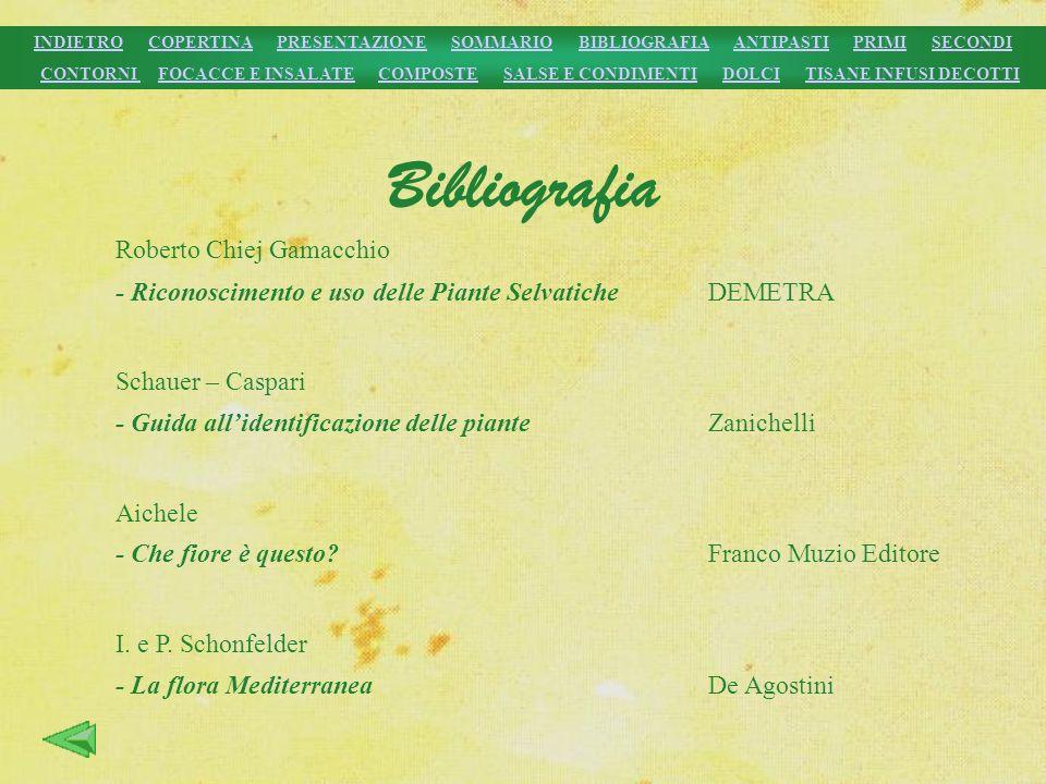Bibliografia Roberto Chiej Gamacchio