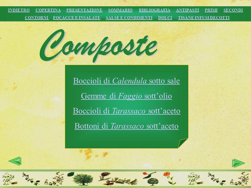 Composte Boccioli di Calendula sotto sale Gemme di Faggio sott'olio