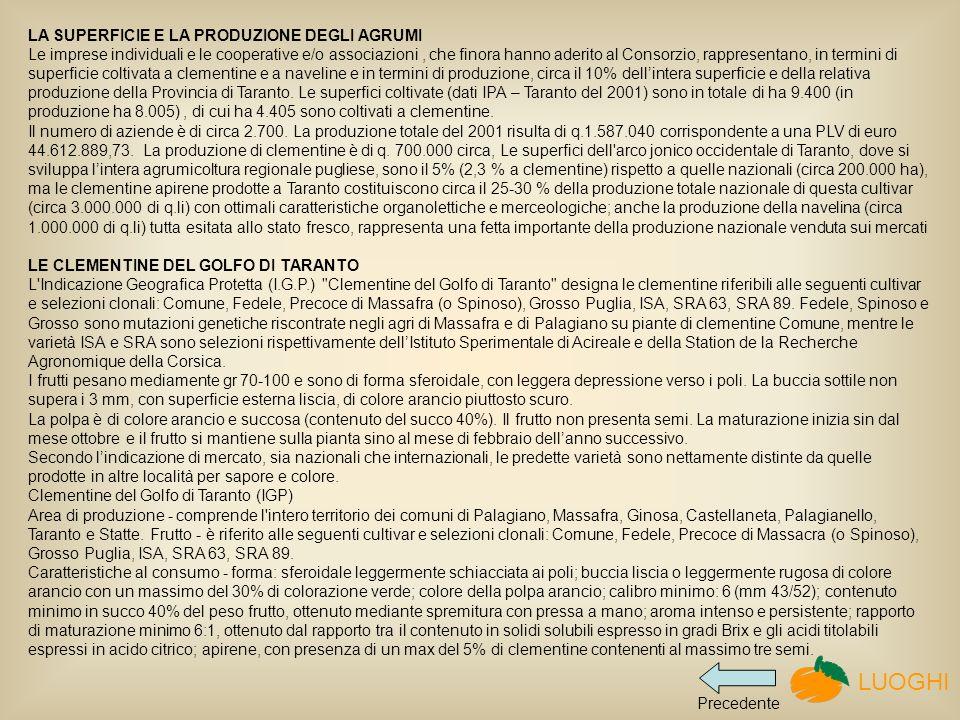 LA SUPERFICIE E LA PRODUZIONE DEGLI AGRUMI Le imprese individuali e le cooperative e/o associazioni , che finora hanno aderito al Consorzio, rappresentano, in termini di superficie coltivata a clementine e a naveline e in termini di produzione, circa il 10% dell'intera superficie e della relativa produzione della Provincia di Taranto. Le superfici coltivate (dati IPA – Taranto del 2001) sono in totale di ha 9.400 (in produzione ha 8.005) , di cui ha 4.405 sono coltivati a clementine.