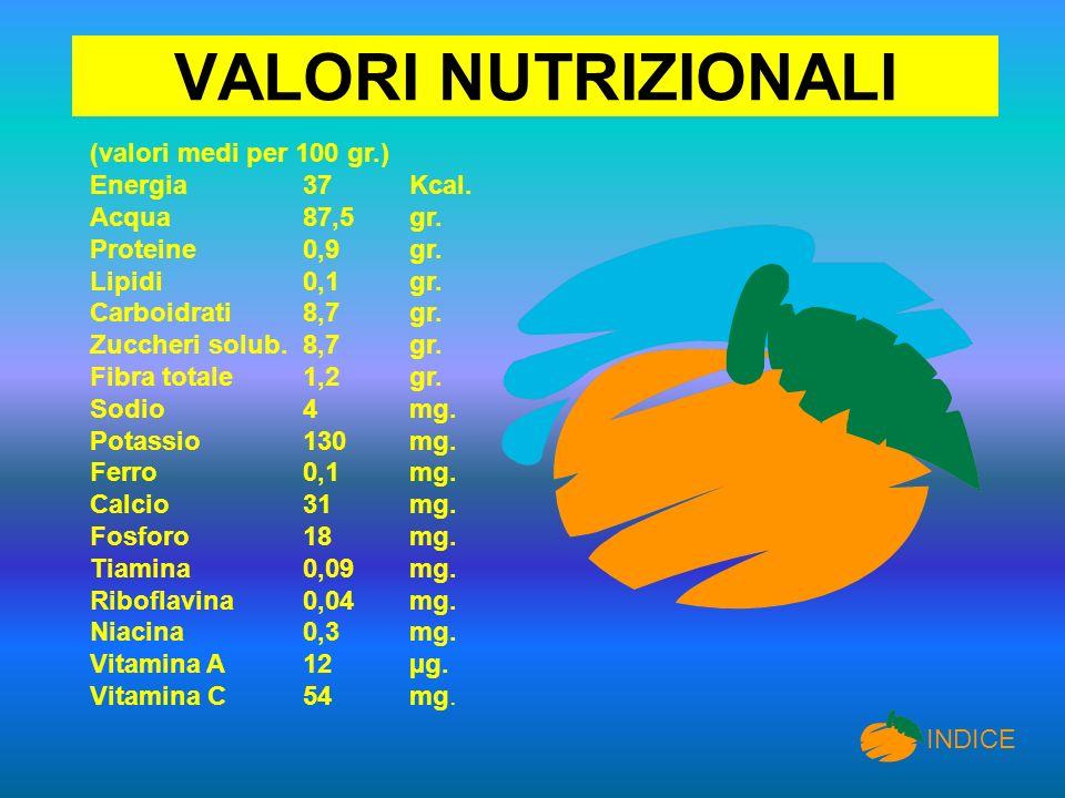 VALORI NUTRIZIONALI (valori medi per 100 gr.) Energia 37 Kcal.