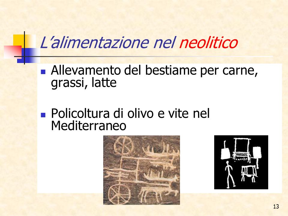L'alimentazione nel neolitico