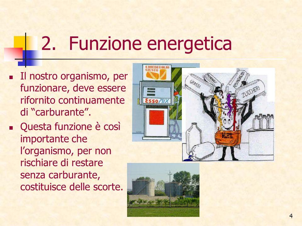 Funzione energetica Il nostro organismo, per funzionare, deve essere rifornito continuamente di carburante .