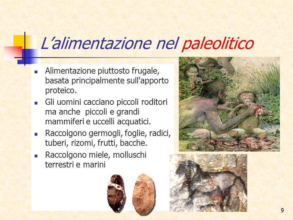 L'alimentazione nel paleolitico