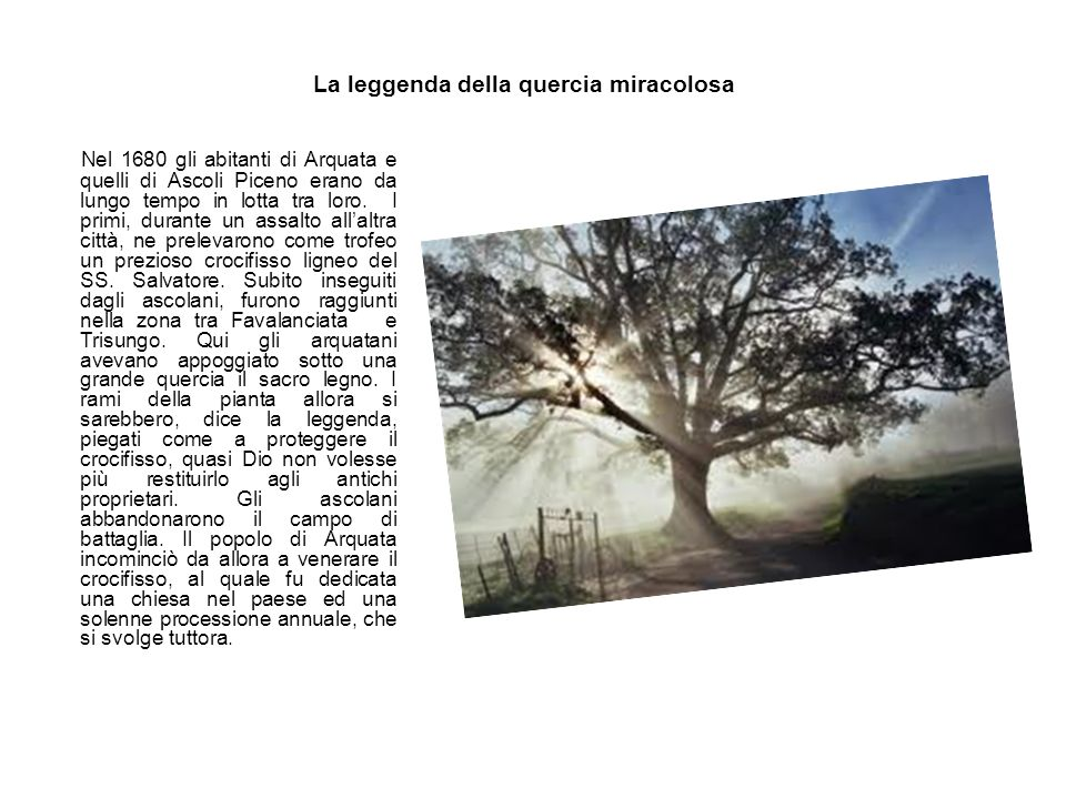 La leggenda della quercia miracolosa