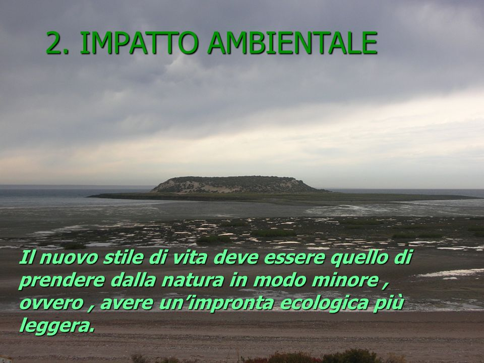 2. IMPATTO AMBIENTALE