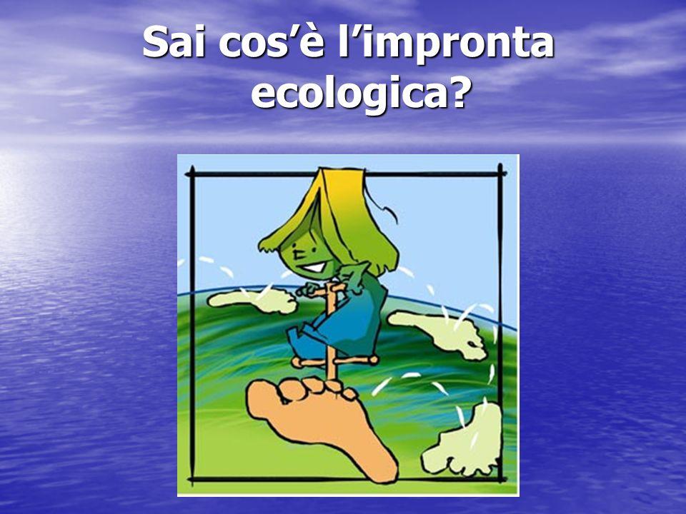 Sai cos'è l'impronta ecologica