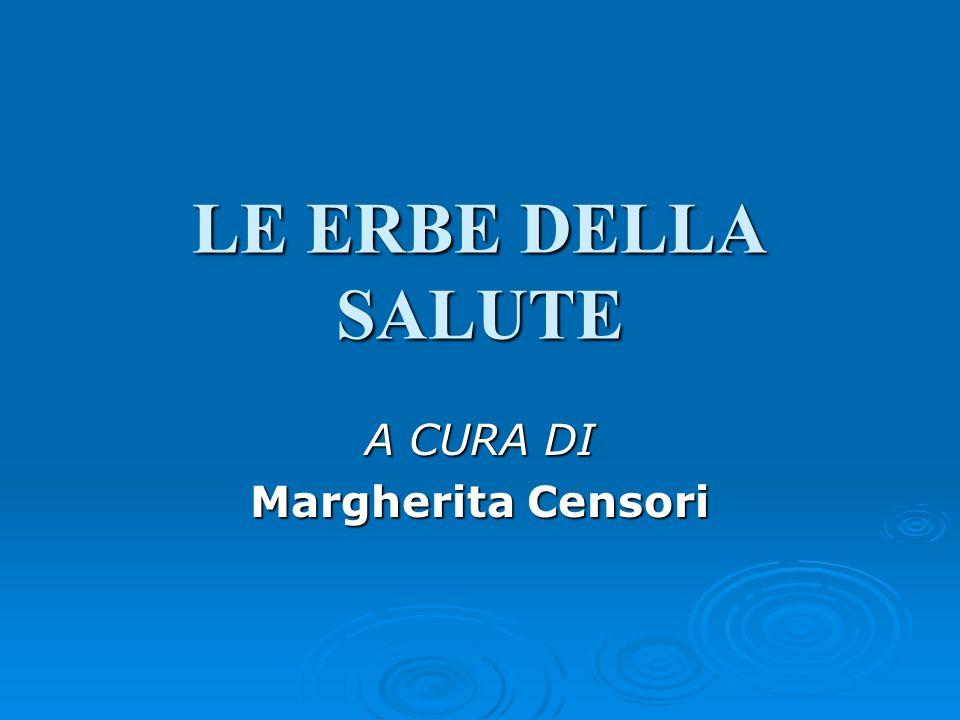A CURA DI Margherita Censori