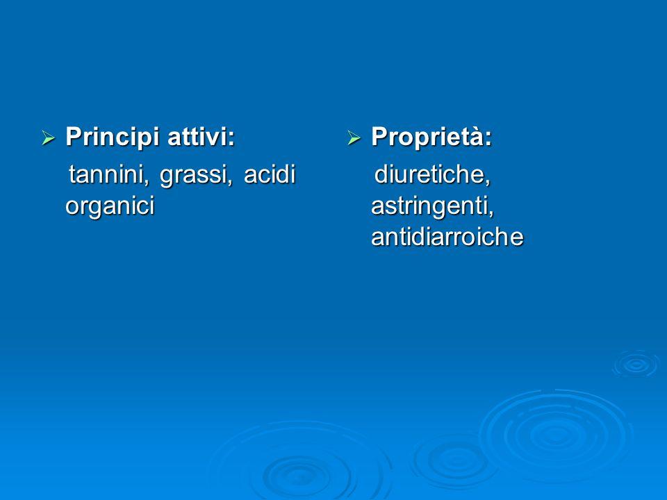 Principi attivi: tannini, grassi, acidi organici Proprietà: diuretiche, astringenti, antidiarroiche
