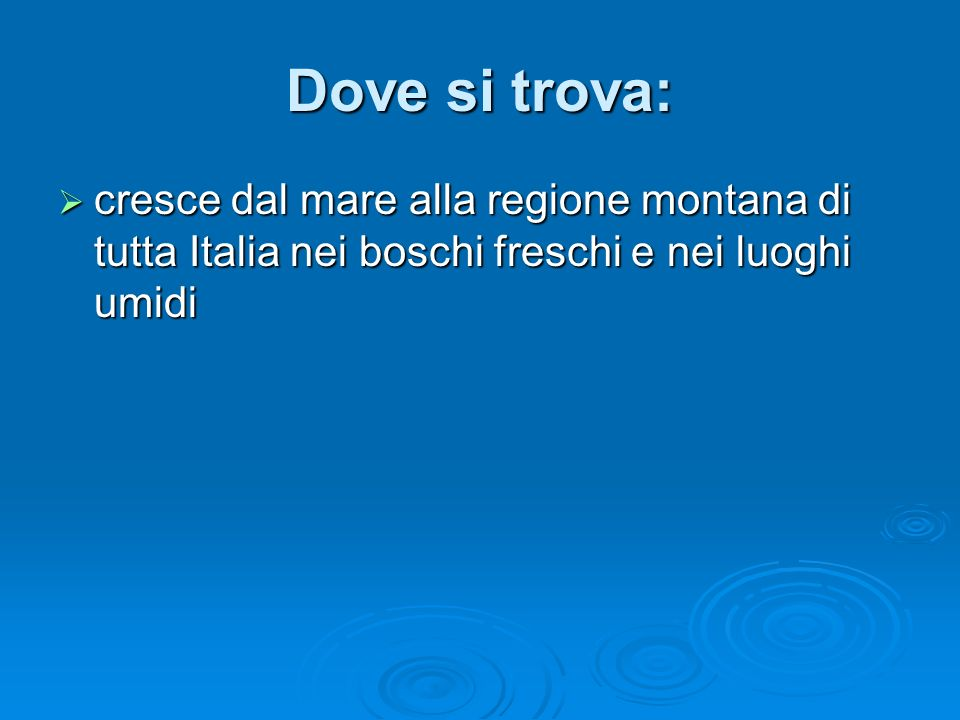 Dove si trova: cresce dal mare alla regione montana di tutta Italia nei boschi freschi e nei luoghi umidi.