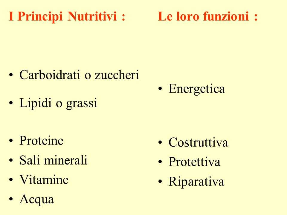 I Principi Nutritivi : Carboidrati o zuccheri. Lipidi o grassi. Proteine. Sali minerali. Vitamine.