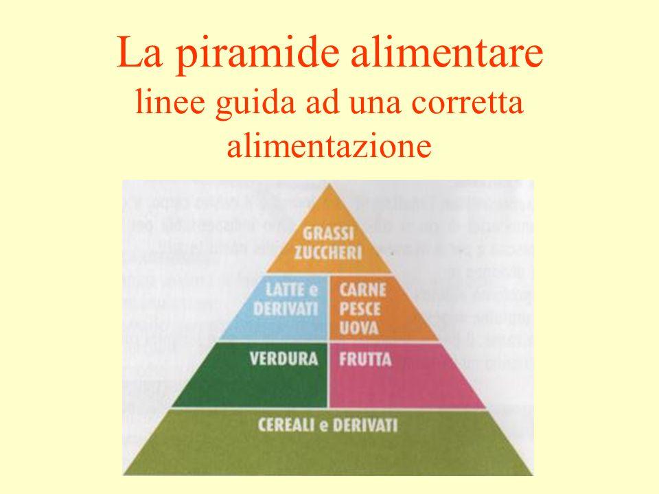 La piramide alimentare linee guida ad una corretta alimentazione