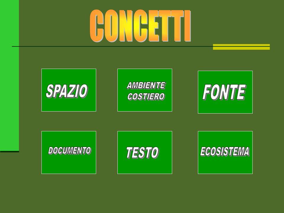 CONCETTI AMBIENTE COSTIERO SPAZIO FONTE DOCUMENTO TESTO ECOSISTEMA