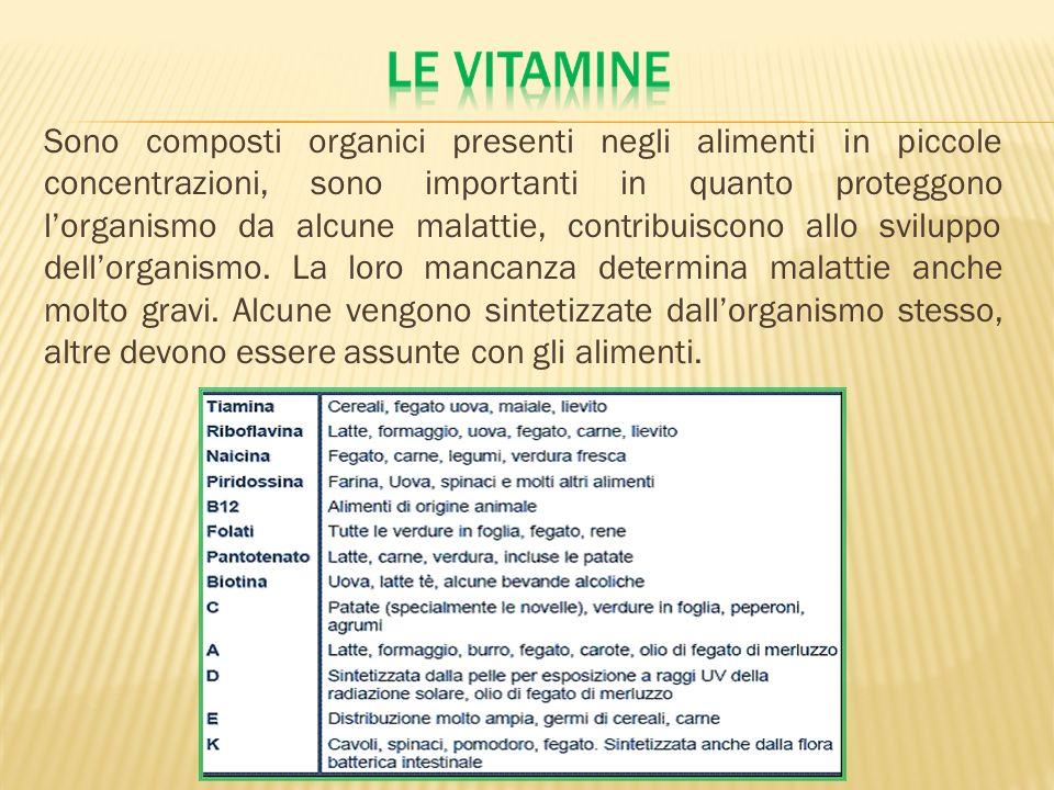 Sono composti organici presenti negli alimenti in piccole concentrazioni, sono importanti in quanto proteggono l'organismo da alcune malattie, contribuiscono allo sviluppo dell'organismo.