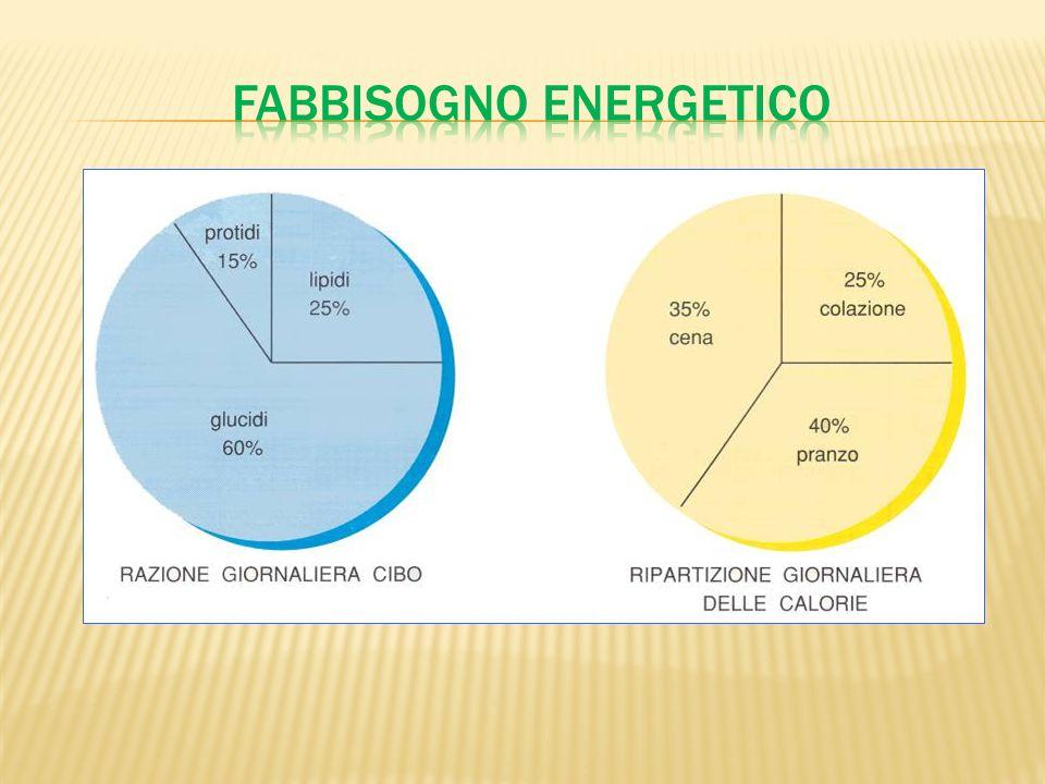 Fabbisogno energetico