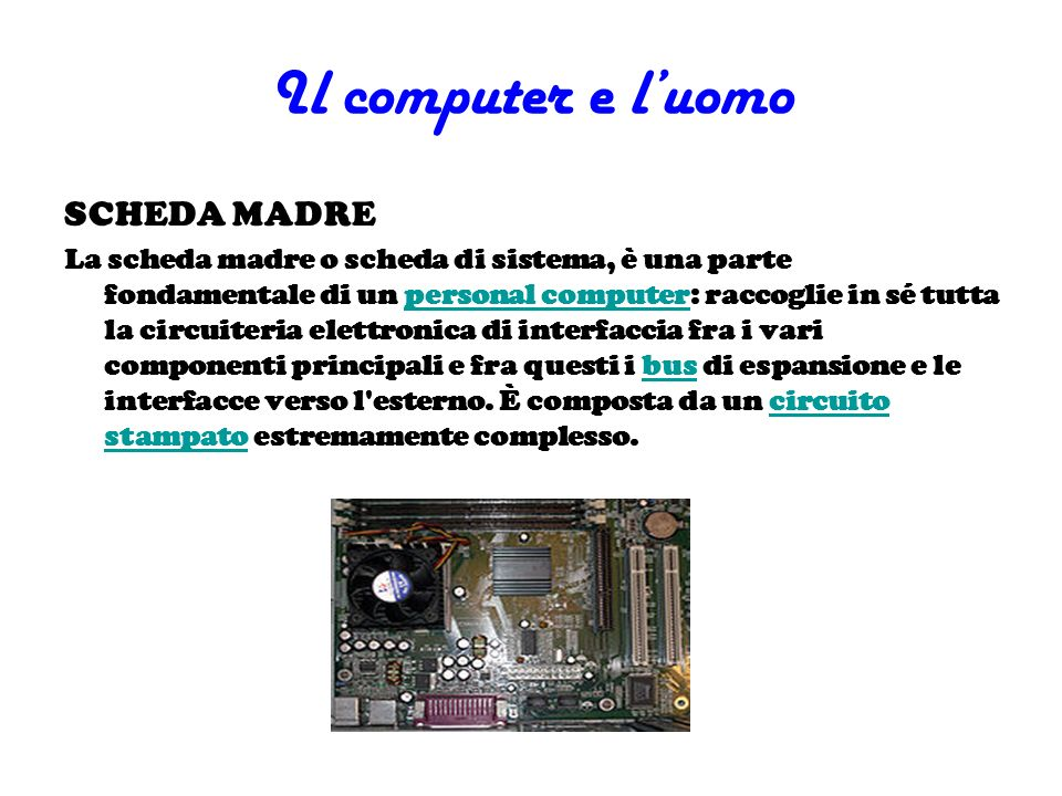 Il computer e l'uomo SCHEDA MADRE
