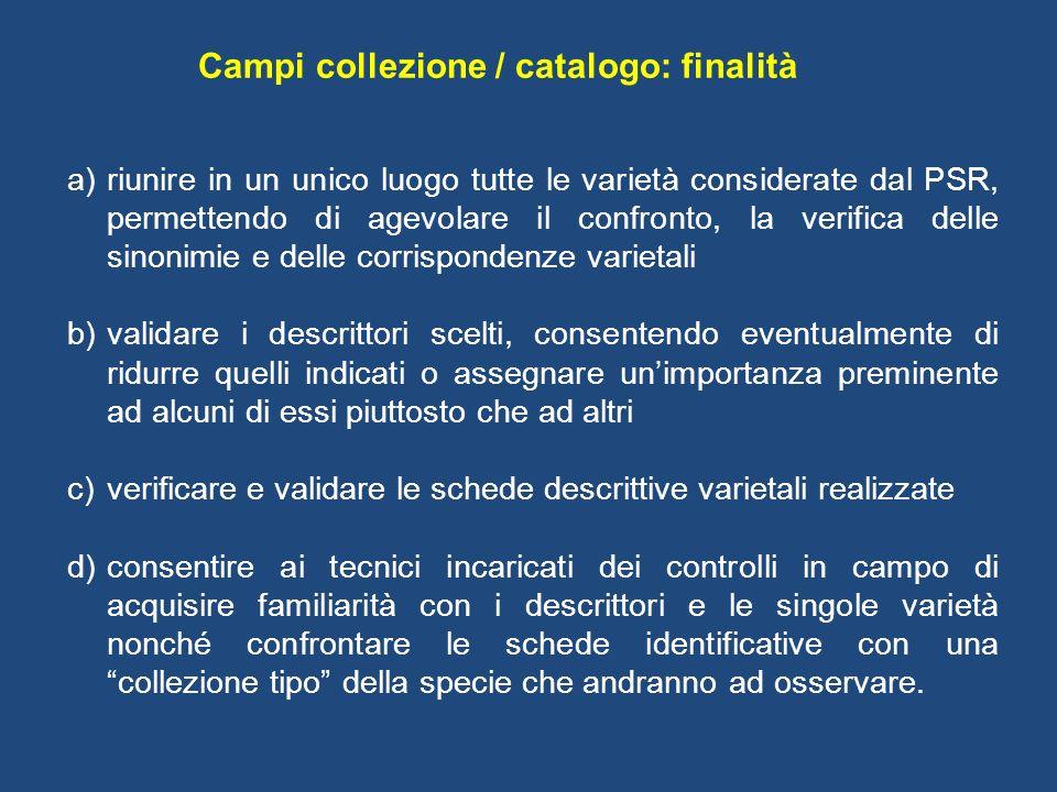 Campi collezione / catalogo: finalità