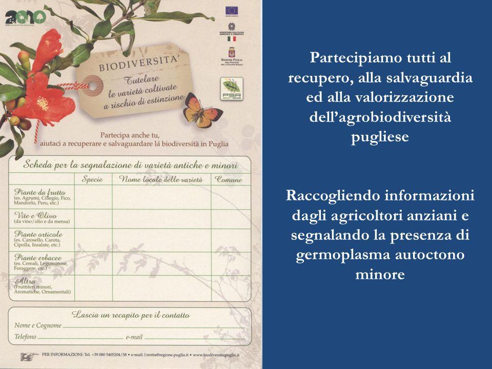 Partecipiamo tutti al recupero, alla salvaguardia ed alla valorizzazione dell'agrobiodiversità pugliese