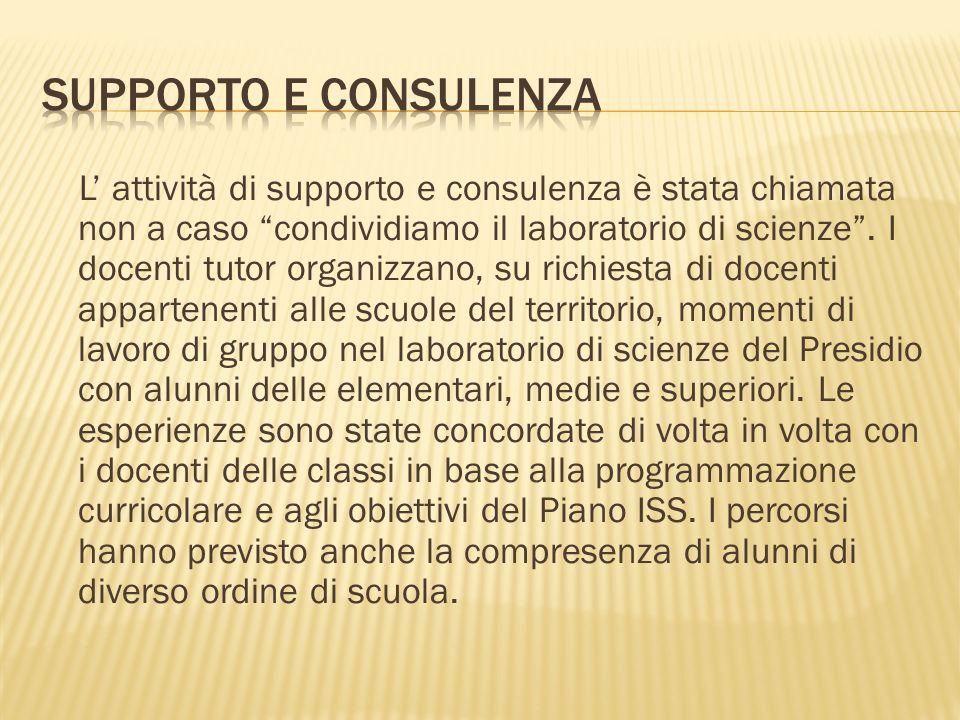 Supporto e consulenza