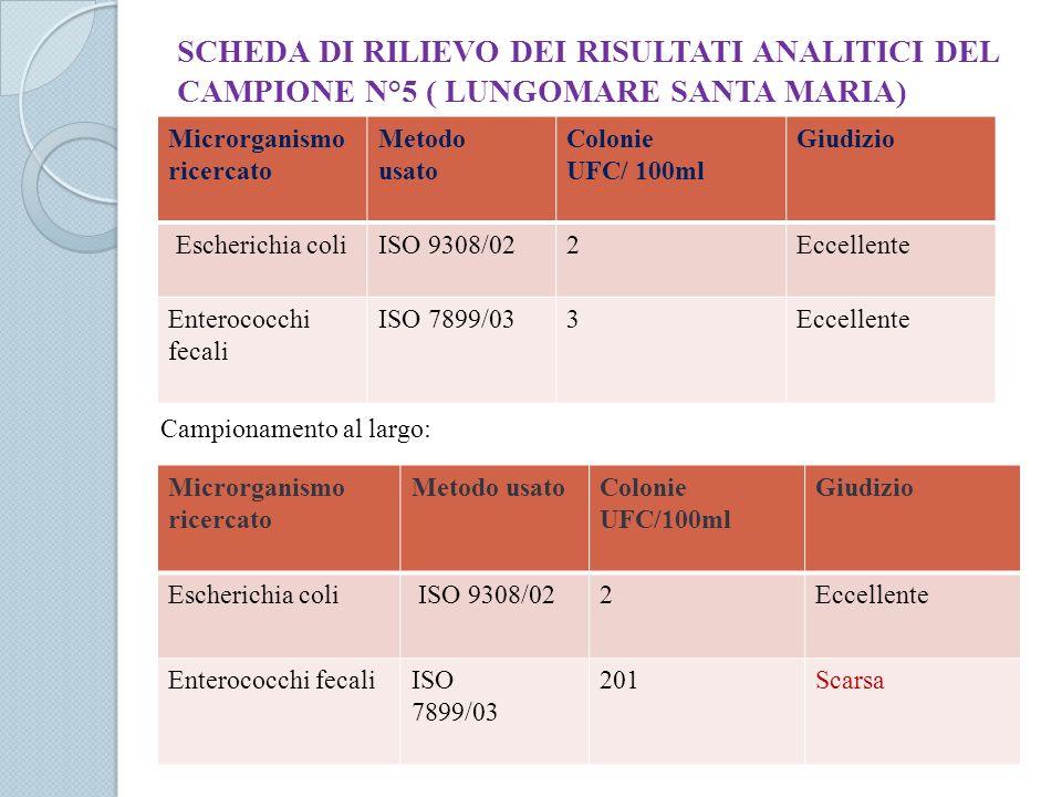SCHEDA DI RILIEVO DEI RISULTATI ANALITICI DEL CAMPIONE N°5 ( LUNGOMARE SANTA MARIA)