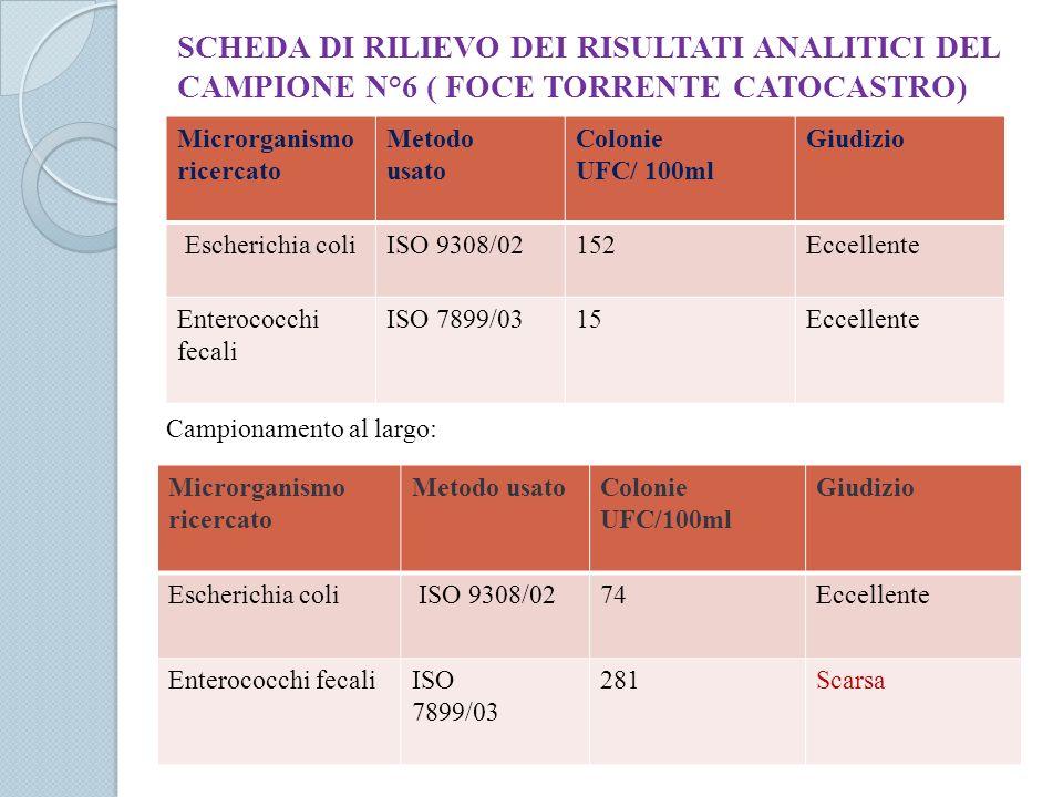 SCHEDA DI RILIEVO DEI RISULTATI ANALITICI DEL CAMPIONE N°6 ( FOCE TORRENTE CATOCASTRO)