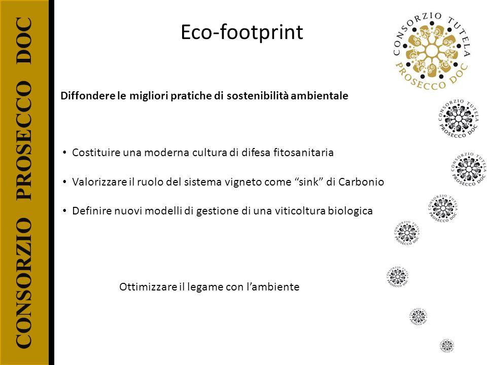 Ottimizzare il legame con l'ambiente