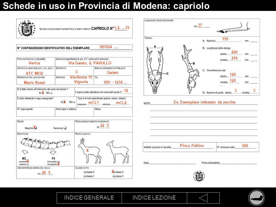 Schede in uso in Provincia di Modena: capriolo