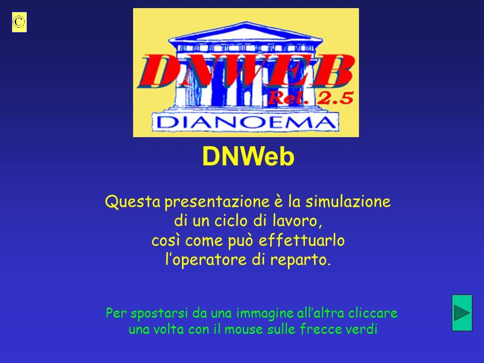 DNWeb Questa presentazione è la simulazione di un ciclo di lavoro,