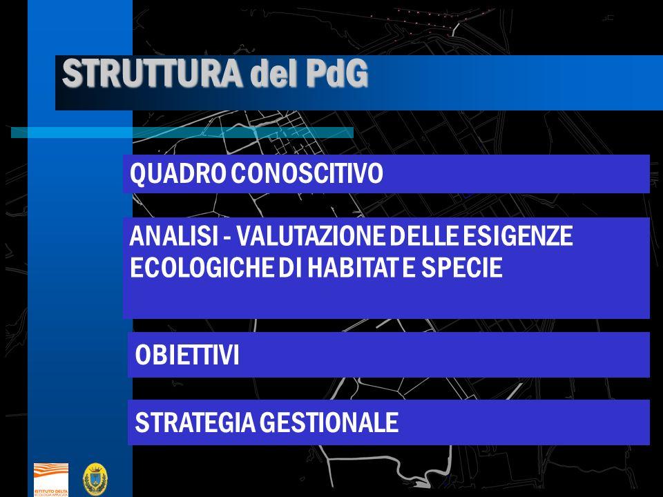 STRUTTURA del PdG QUADRO CONOSCITIVO