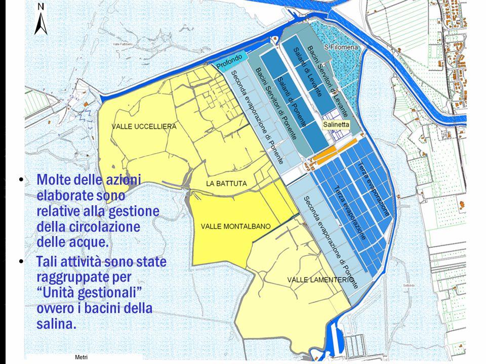 Piano di Gestione Molte delle azioni elaborate sono relative alla gestione della circolazione delle acque.