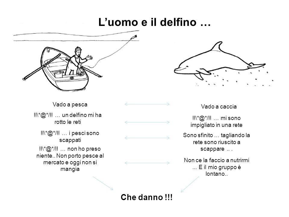 L'uomo e il delfino … Che danno !!! Vado a pesca Vado a caccia