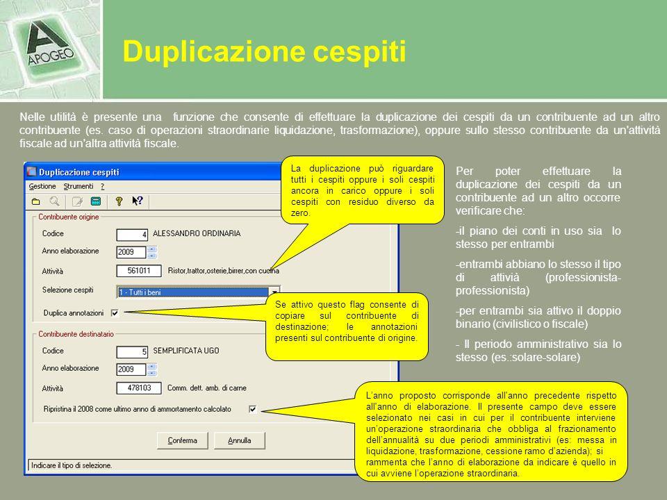 Duplicazione cespiti