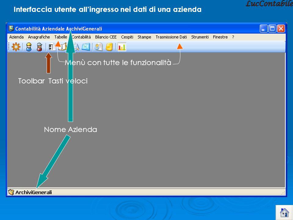 LucContabile Interfaccia utente all'ingresso nei dati di una azienda