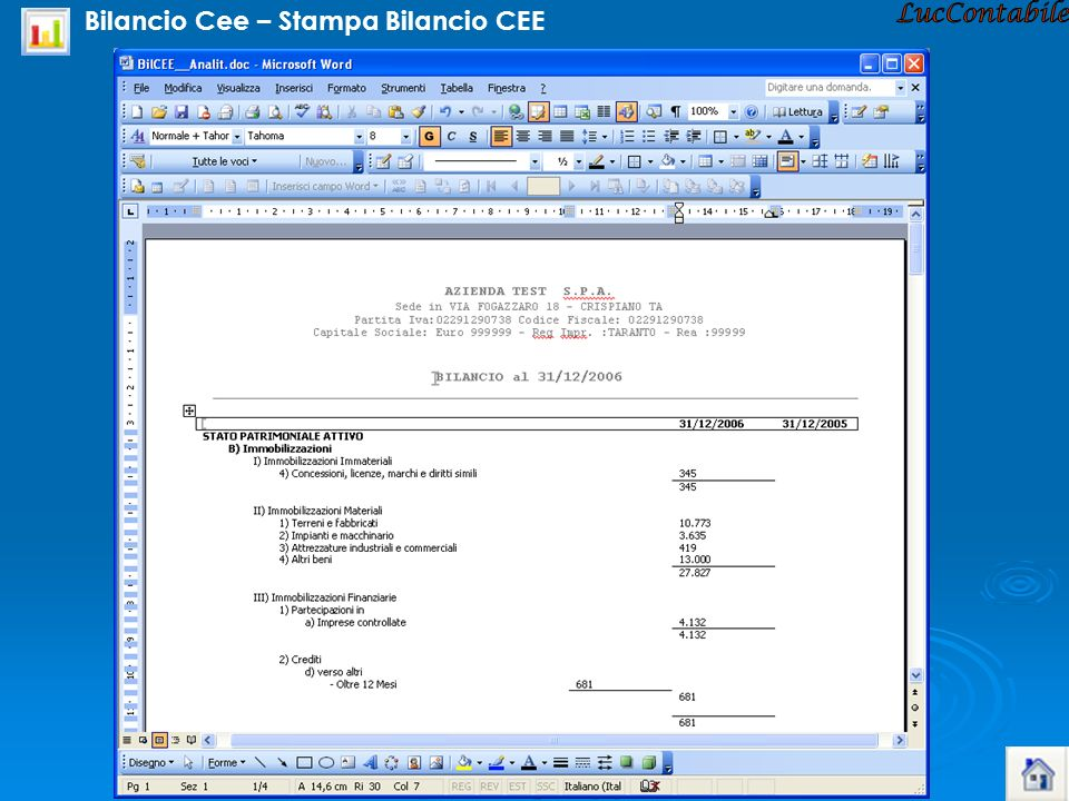 LucContabile Bilancio Cee – Stampa Bilancio CEE