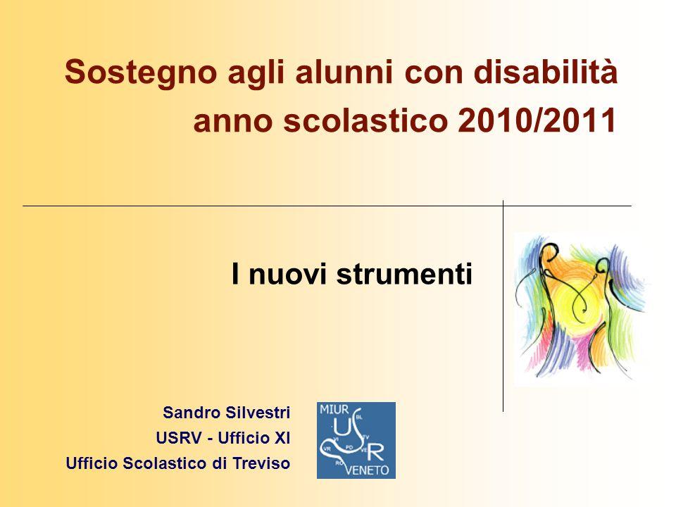 Sostegno agli alunni con disabilità anno scolastico 2010/2011