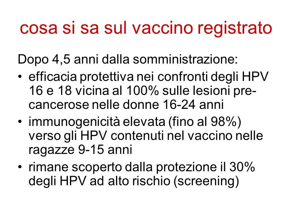cosa si sa sul vaccino registrato
