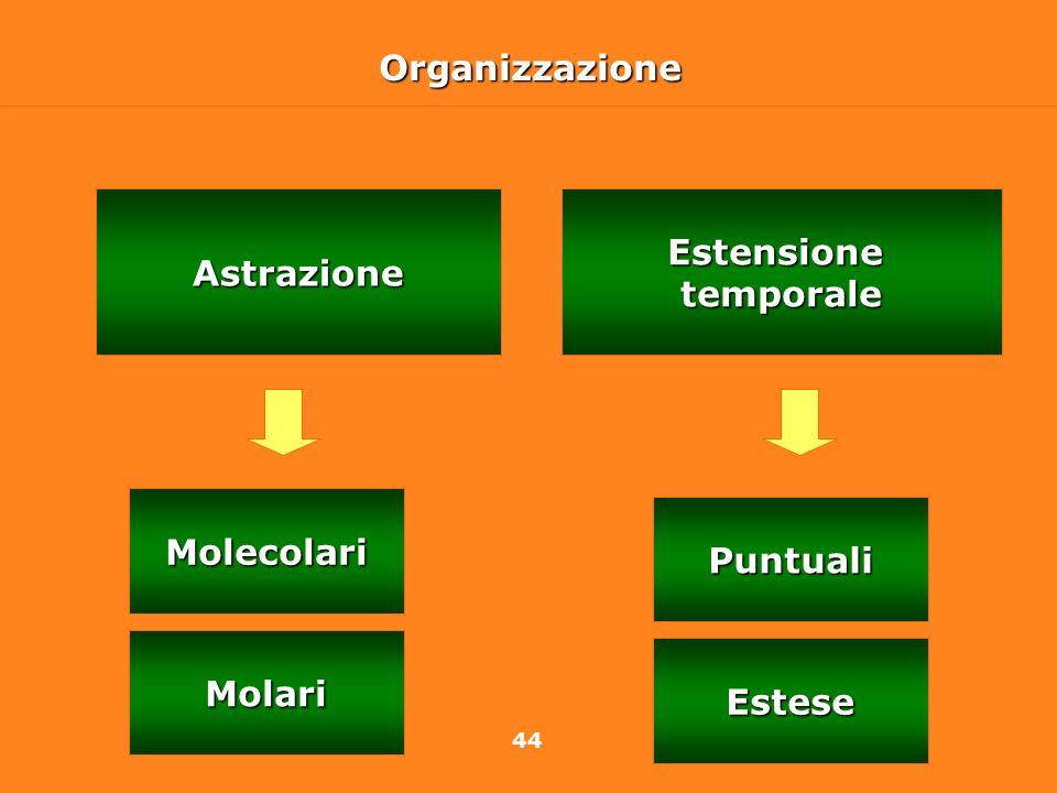 Organizzazione Astrazione Estensione temporale Molecolari Puntuali Molari Estese