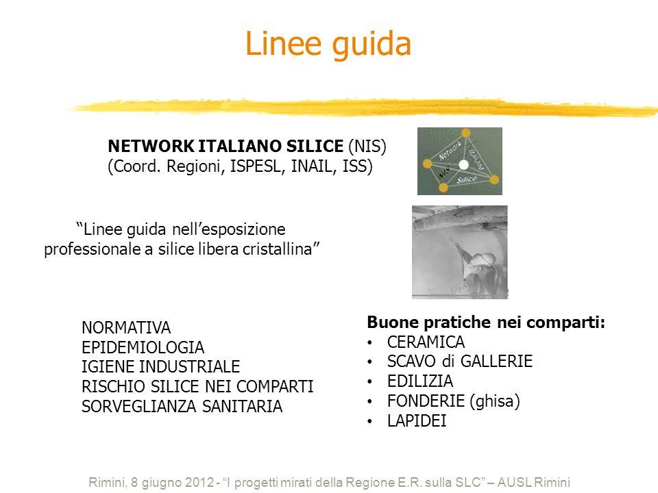 Linee guida NETWORK ITALIANO SILICE (NIS)