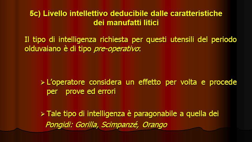 5c) Livello intellettivo deducibile dalle caratteristiche dei manufatti litici