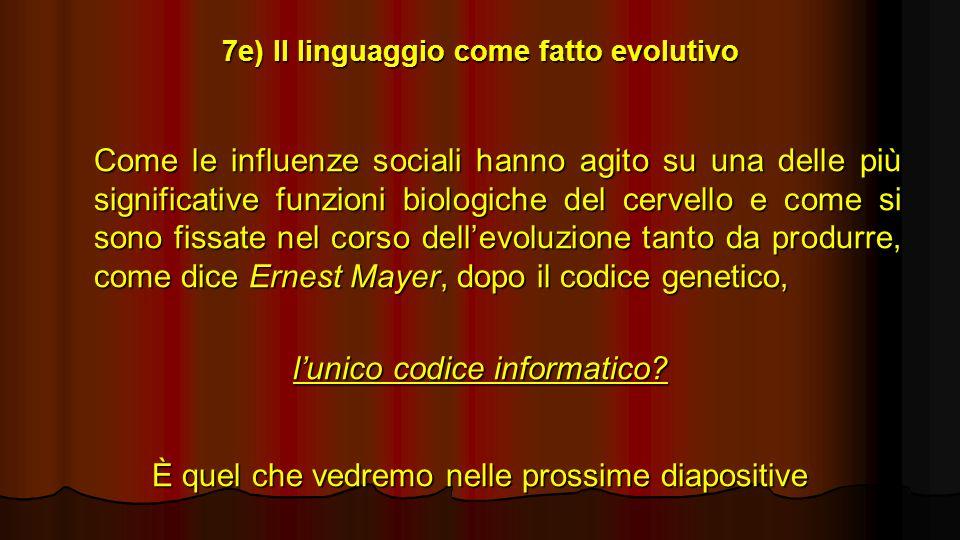 7e) Il linguaggio come fatto evolutivo