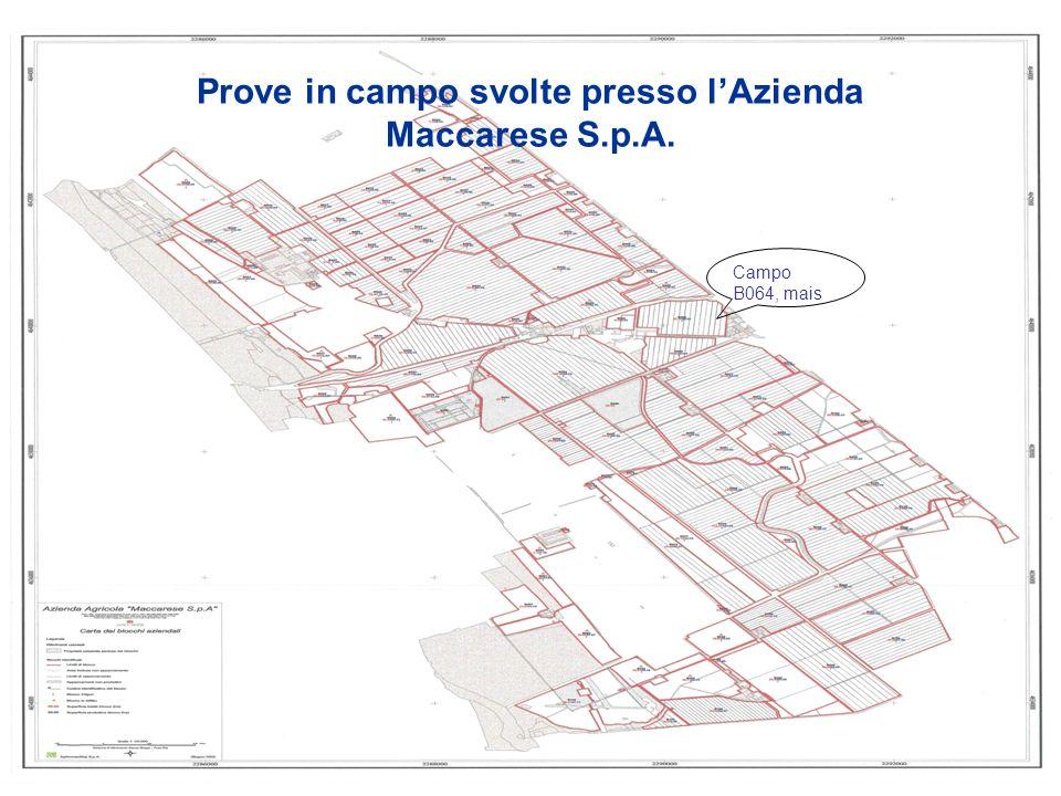 Prove in campo svolte presso l'Azienda Maccarese S.p.A.