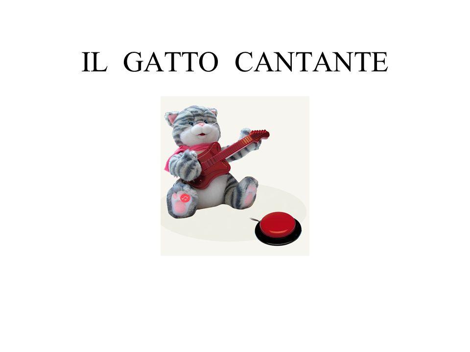 IL GATTO CANTANTE