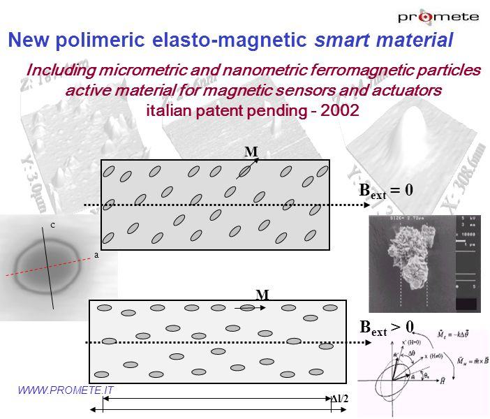 Bext = 0 Bext > 0 New polimeric elasto-magnetic smart material