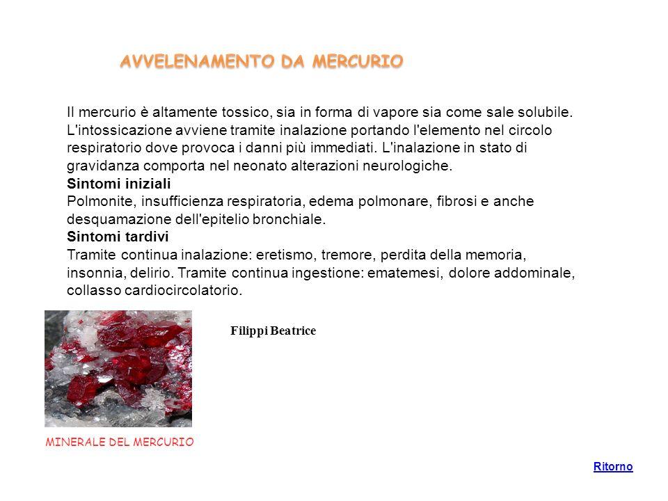 AVVELENAMENTO DA MERCURIO