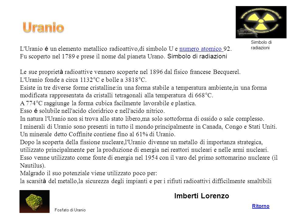 Uranio Imberti Lorenzo